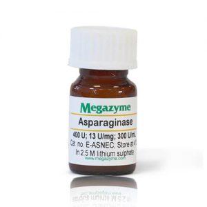 asparaginase escherichia coli
